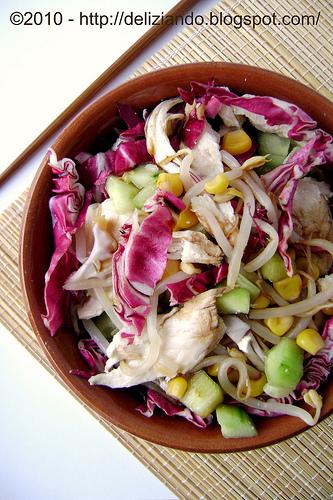 Insalata di pollo con mais, germogli, cetrioli e radicchio
